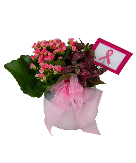 Breast Cancer Awareness Planter